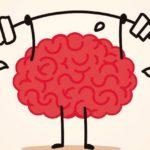 Hábitos y alimentos que ayudan a rejuvenecer y mantener sano el cerebro