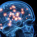 6 ejercicios que hace cada día la neurocientífica Wendy Suzuki para mejorar su fortaleza mental